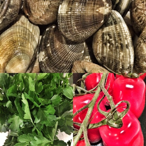 Venusmuscheln, Petersilie, Tomaten